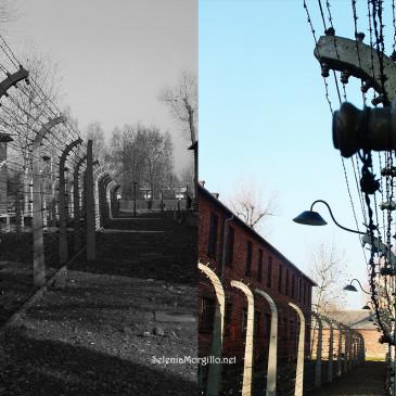 Auschwitz Birkenau, almeno una volta nella vita