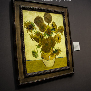 I girasoli di Vincent
